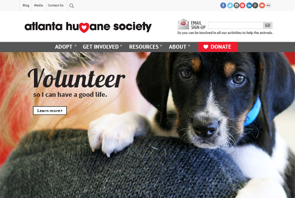 Atlanta Humane Society website design